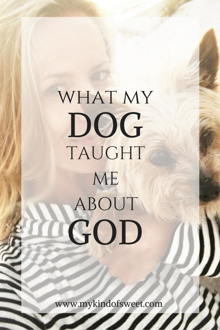 what-my-dog-taught-me-about-god-1