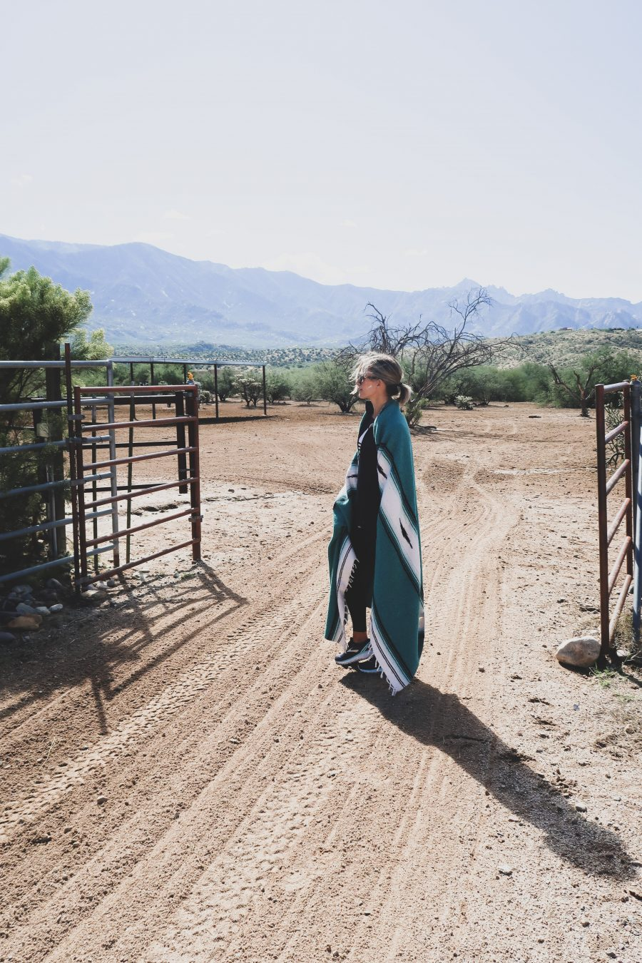 Miraval equine therapy