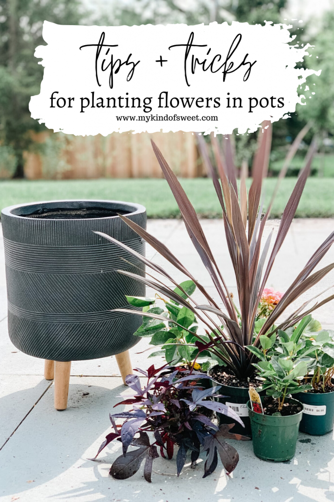 Planting flowers in pots, tips and tricks