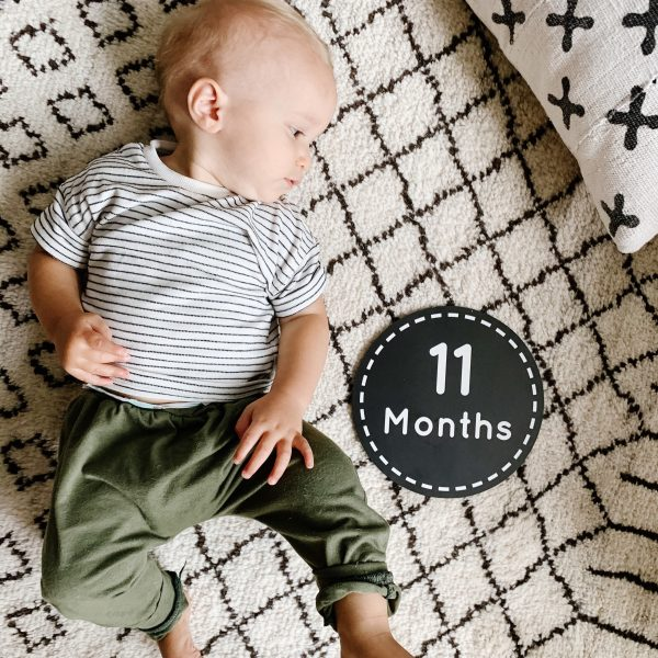 Baby Gray | 11 Months