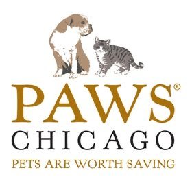 The Friday Five, Paws Chicago